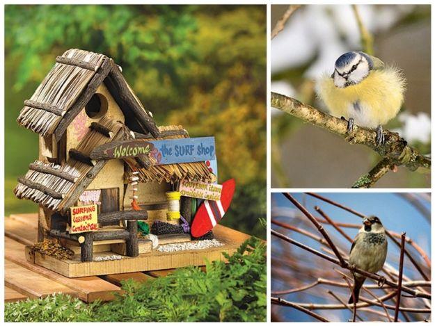 Вдохновение на улице - домик для птиц