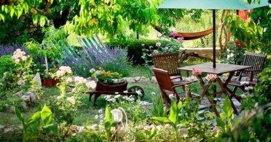 Естественные способы вредителей в вашем саду