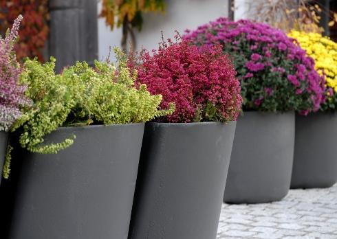 Современный сад горшки Swisseform