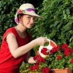 Правильная подкормка растений — Как быстро укрепить растения?