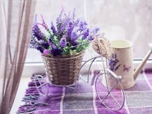 Немного Прованса в вашем доме, саду или на балконе. Посмотреть, как оздоровительный лаванды!