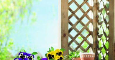 Страстная неделя садоводов