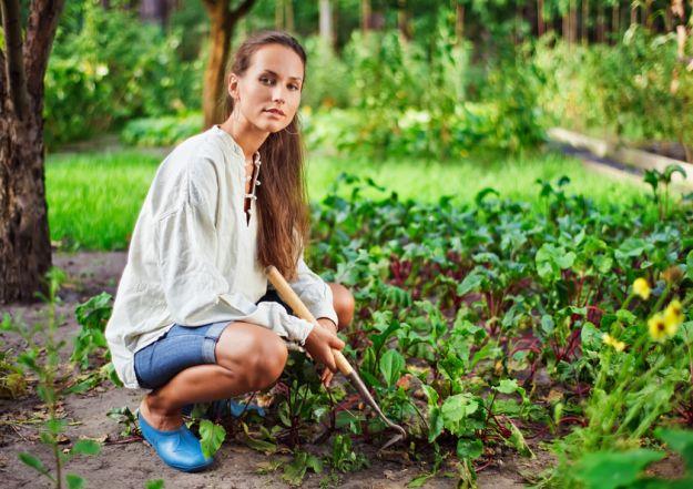 Как грамотно заботиться о сад?