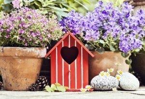Вы хотите, чтобы в вашем саду пахло изумительно? Вот 12 видов сильно ароматных цветов
