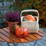 Работы мебель на осень