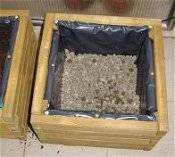 Как высаживать растения для балконных ящиков