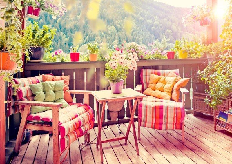 Лучшие цветы на балкон
