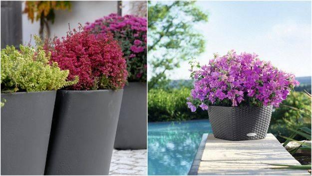 Вазоны садовые в разных стилях