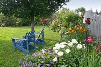 Садовые советы