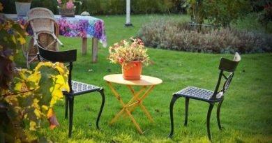 Как заботиться о сад перед зимой