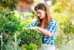 4 необычные идеи для организации пространства в саду