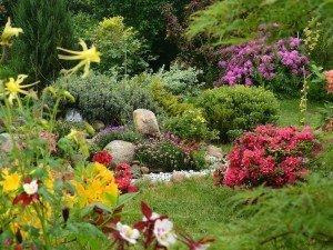 Эффектный скальняк в саду можно сделать очень простым способом. Даже в маленьком дворе!