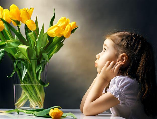 Срезанные цветы - как ухаживать за ними?
