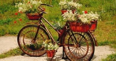 Горшки садовые - моды зеленый дизайн