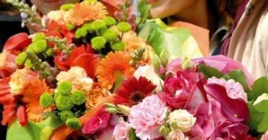 Необычная сила цветов
