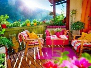Какие цветы выбрать на балкон?
