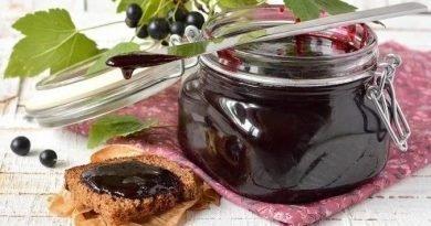 Джем из черной (красной) смородины — 7 простых рецептов