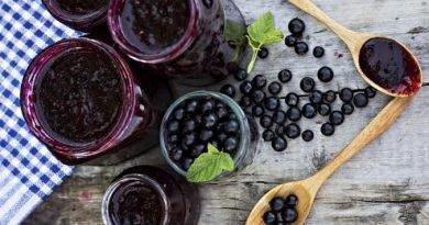 Варенье из черной смородины на зиму: 8 простых рецептов желеобразного варенья