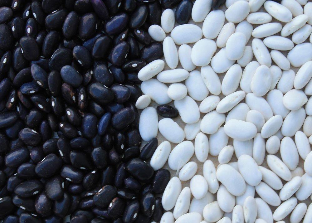 Выращивание бобовых культур